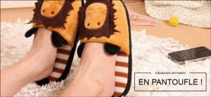 Consulter ses points en pantoufles par France Connect permis